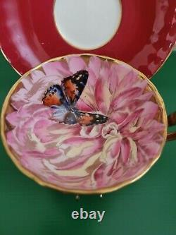 AYNSLEY Vintage Bone China Chrysanthemum Butterfly Gold Teacup & Saucer Set RARE