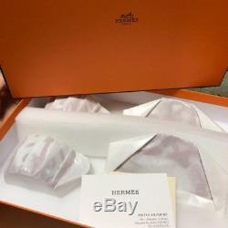 Hermes Balcon du Guadalquivir Tea Cup & Saucer Set Dish Coffee Tea NEW withBox F/S