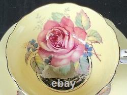 PARAGON Antique Teacup & Saucer Set PLATINUM with HUGE FLOATING CABBAGE ROSE