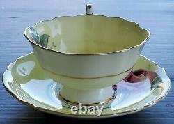 PARAGON Teacup & Saucer HUGE FLOATING CABBAGE ROSE Double Warrant Antique Set
