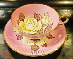 Paragon Large Cabbage Floating Rose Pink Background Teacup & Saucer Set Vintage