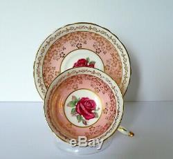 Paragon Pink Red Rose Bone China Cup & Saucer Set