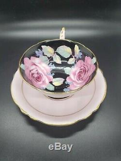 Paragon Roses on Black, And Pink Tea Cup and Saucer Set England Bone China