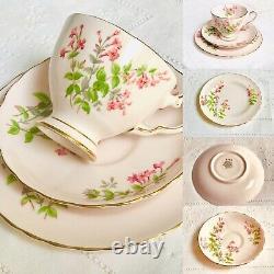 Pink Tuscan Tea Set English Fine Bone China 21 Piece Tea cups saucers