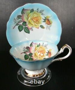 Queen Anne Large Cabbage Roses Light Blue Gold Rimmed Teacup and Saucer Set