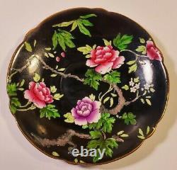 Scarce Shelley Black Gainsborough Cabbage Roses Trio Teacup Saucer Plate Set
