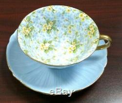 Shelley Primrose Chintz Blue Oleander Teacup and Saucer Set